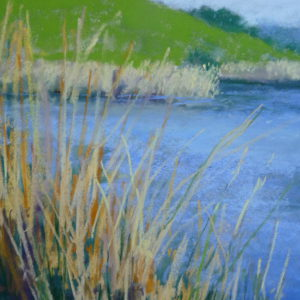 Morning Reed Study by