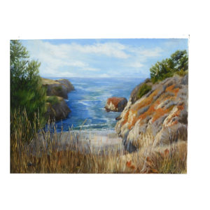 Point Lobos cove by