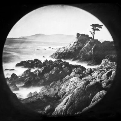 Lone Cypress l Carmel CA 3.2021 by