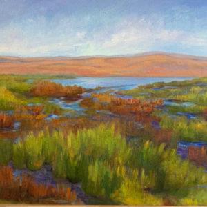 Baylands in Summer light by