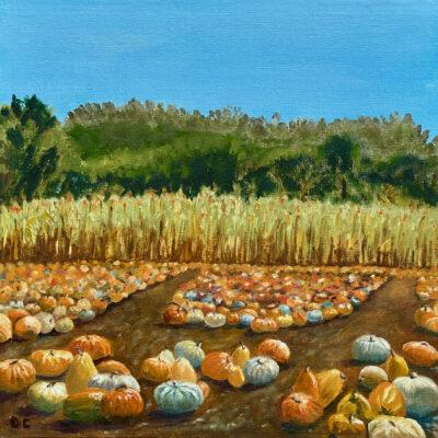 Pumpkin Patch by