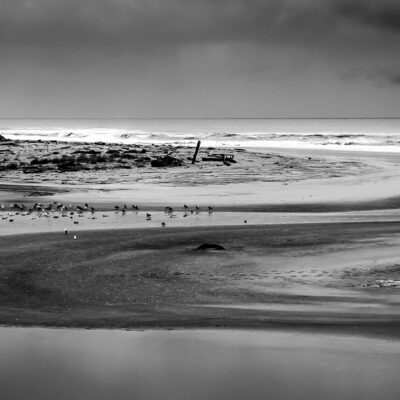 San Gregorio Beach by
