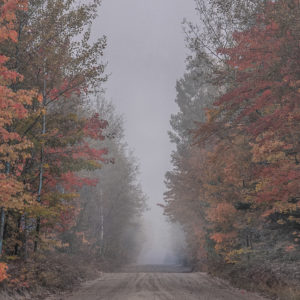 Autumn's road by
