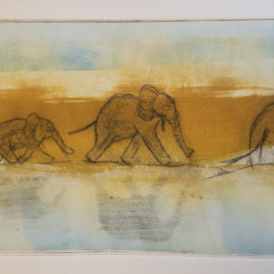 Elephant Migration by