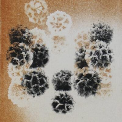 Yoko Tahara Printmaking