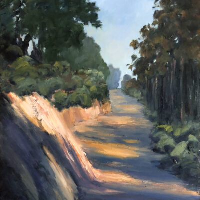 Road on Spring Mountain by Patricia Jones